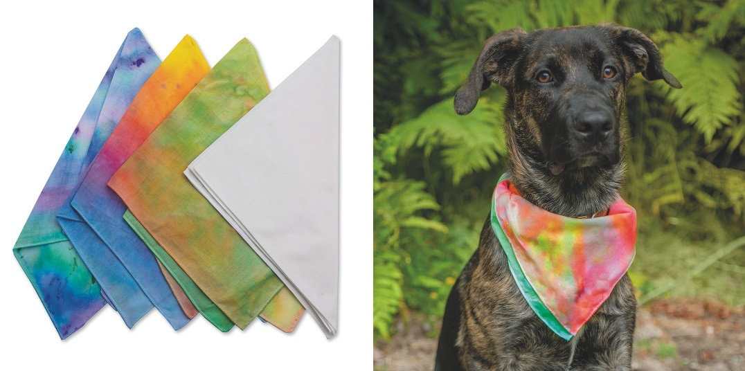 design your own pet products