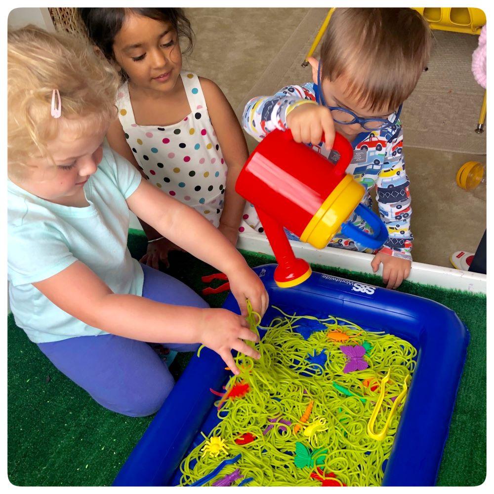 Group Bug sensory Bin Fun