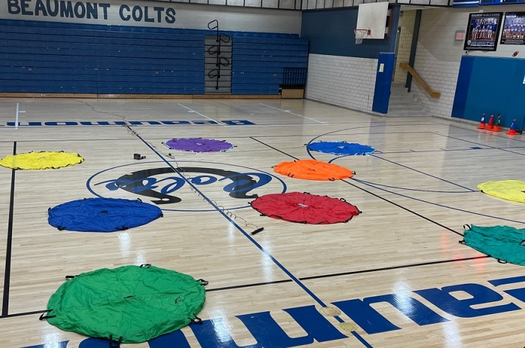 Topgolf activity for physed