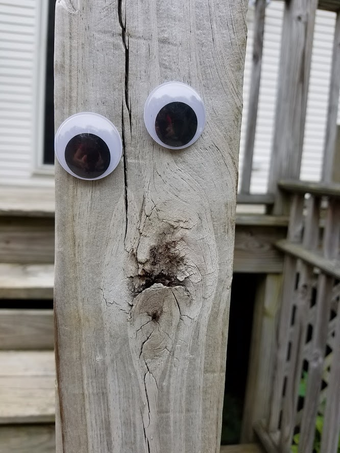 Wiggly Eye porch