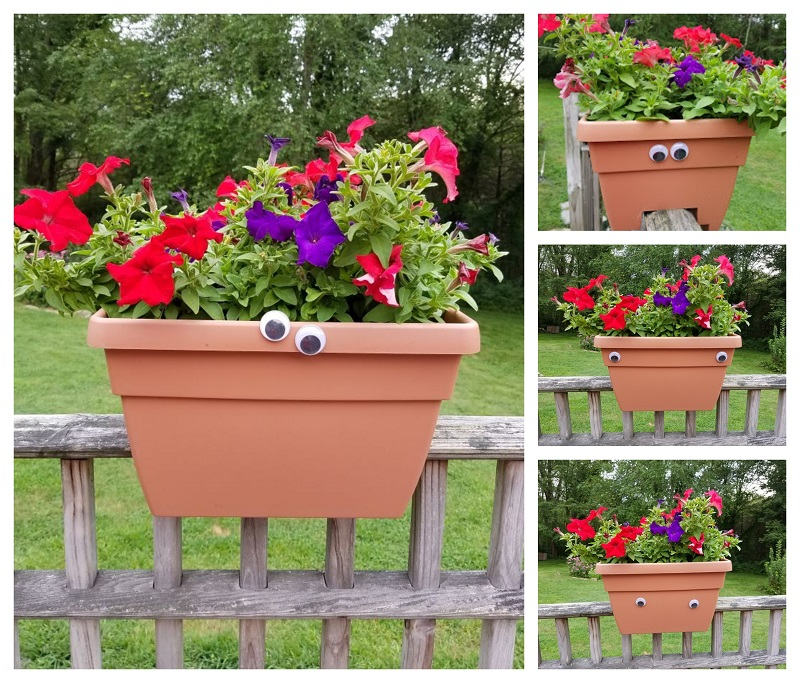Wiggly eye planters