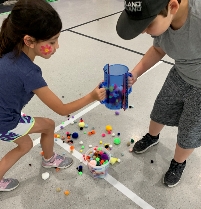 field day activity