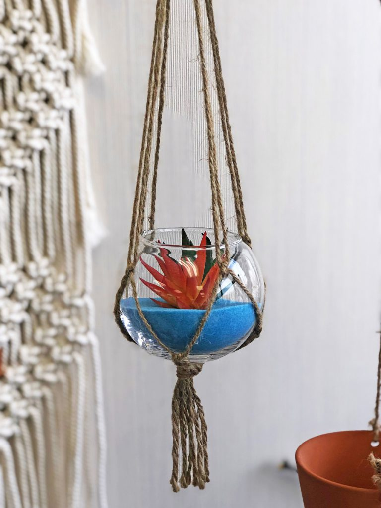 hanging glass air plant