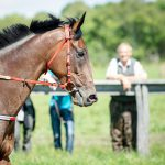 How to Prepare Your Facility for the Kentucky Derby