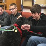 Media Center Activity – Therapy Dog for Students