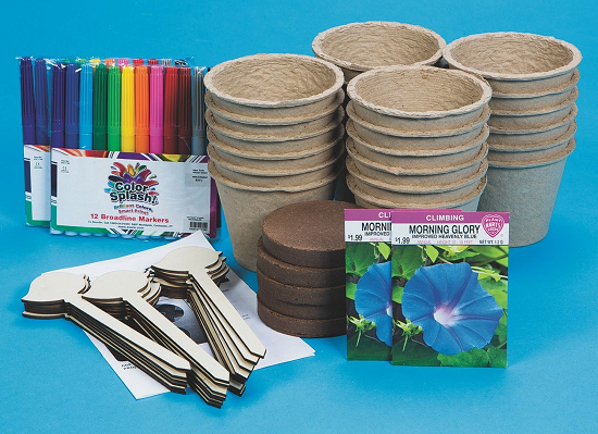 mornign glory garden kit