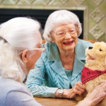 How to Start a Faux Pet Therapy Program in Your Senior Facility