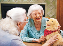 pet therapy program seniors
