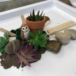 Sensory Tray Activity for Cognitive Skill Building – Reflection Pool