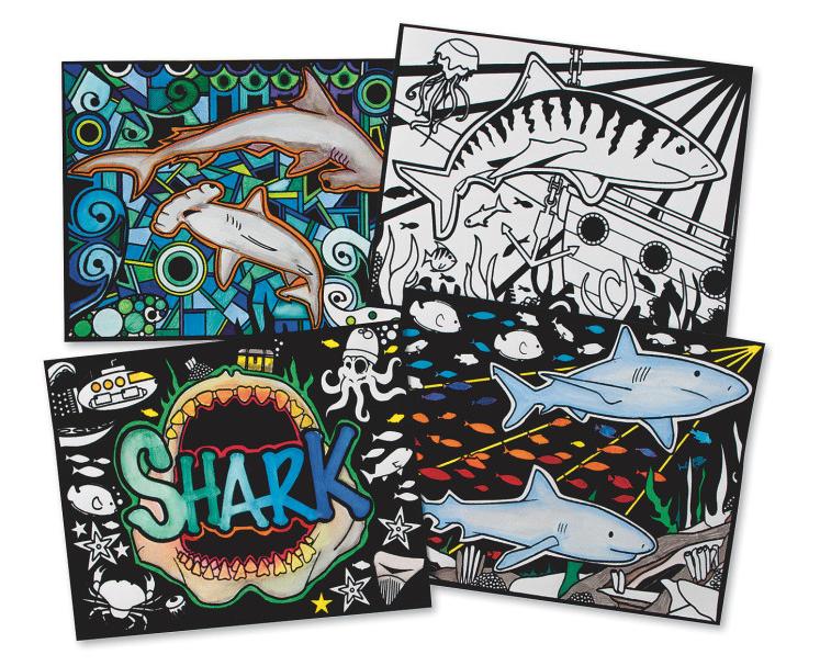 shark velvet art posters