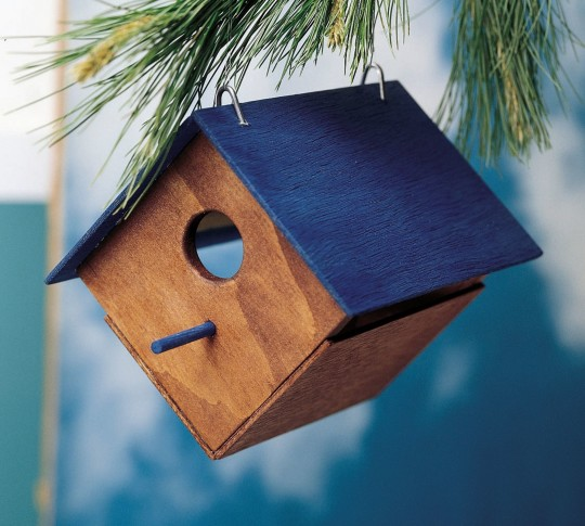 Birdhouse Activities Planning A Spring Nature Watch S S Blog